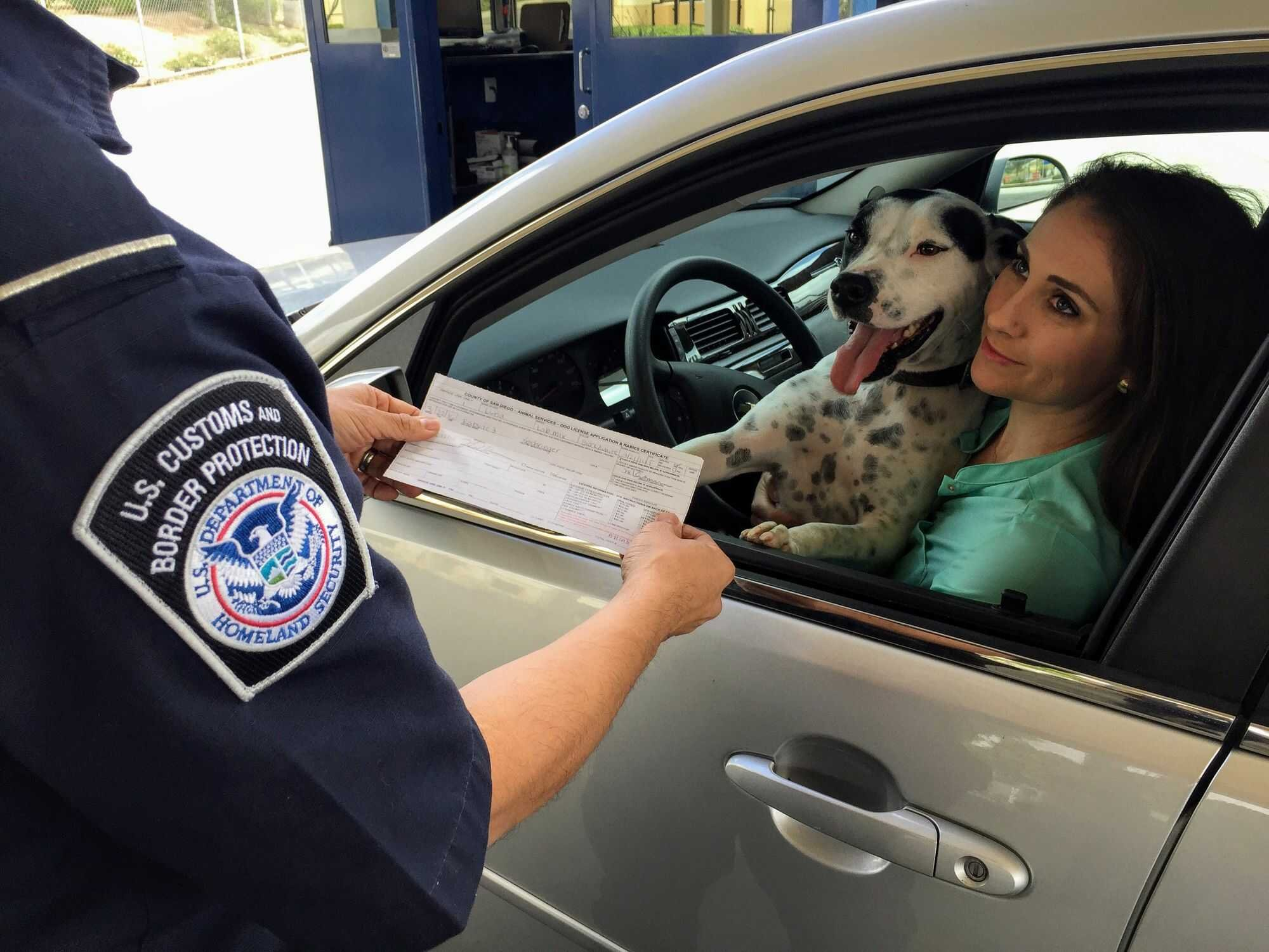 Woman and dog in car checked by US Border Protection